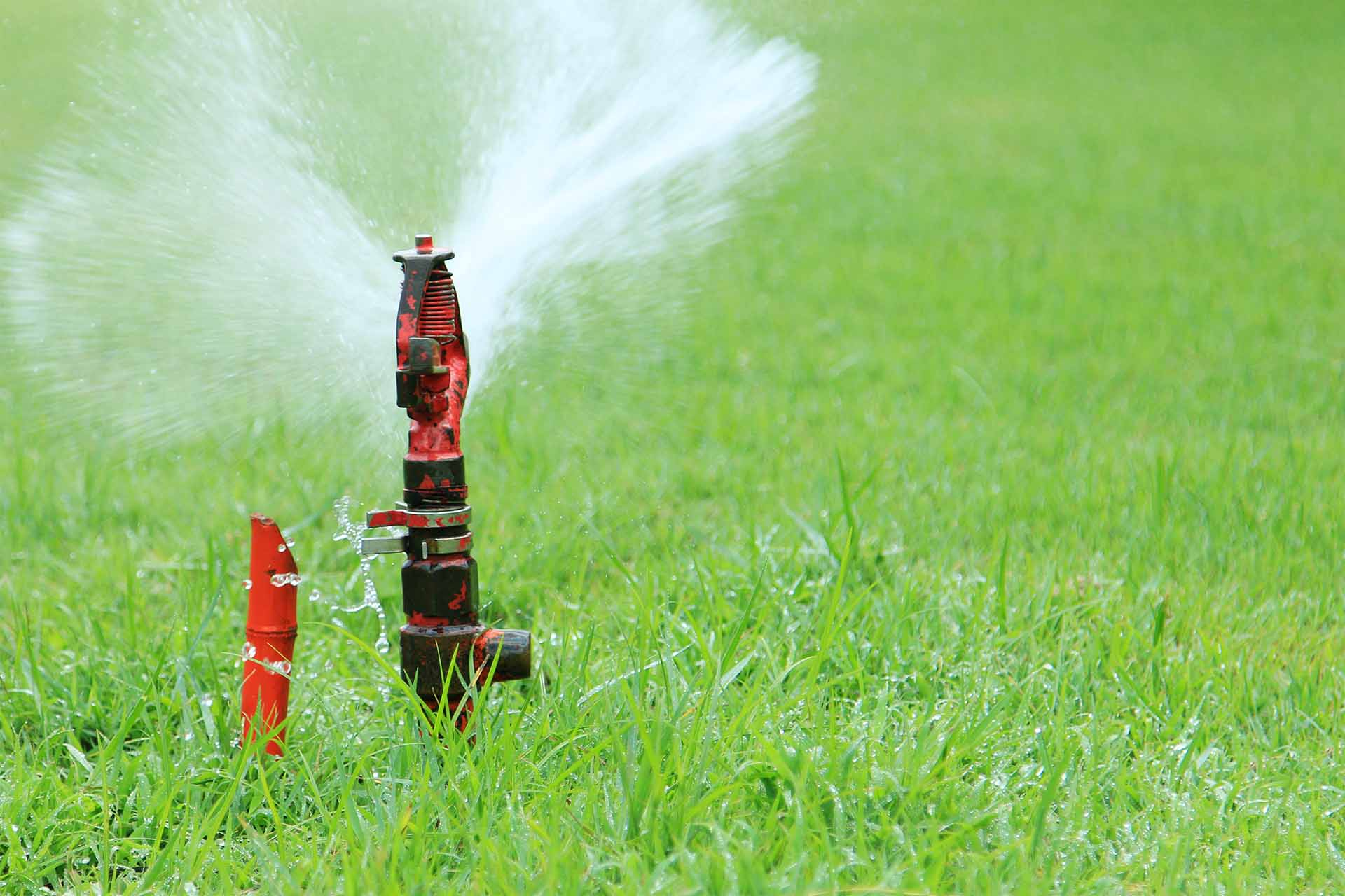 What do I need to know before installing a sprinkler system?